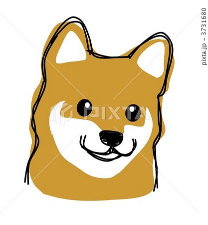 シバ犬 ペット イラスト かわいい 犬 動物 白色 立ち耳のイラスト素材