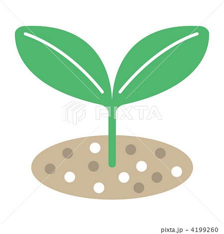 芽吹く 芽 葉 発芽のイラスト素材 Pixta