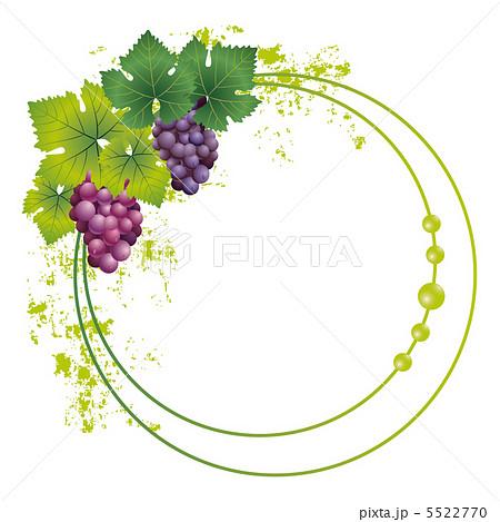 グレープ 食べ物 葡萄 ぶどうのイラスト素材 Pixta