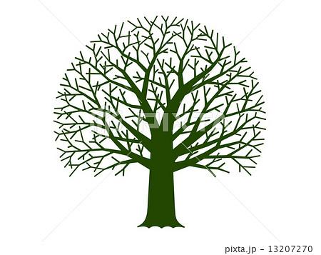 樹木 枯れ木 木 白背景のイラスト素材 Pixta