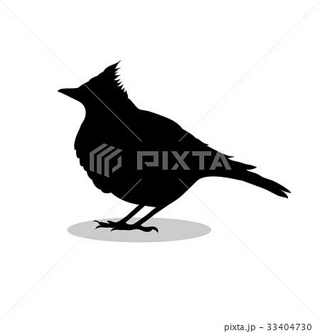 ひばりのイラスト素材 Pixta