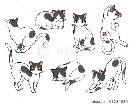白黒猫のイラスト素材